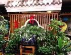 森林雨火锅加盟费多少钱?西安森林雨火锅加盟条件是什么?