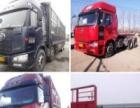 绥中二手车辽绥汽贸常年出售各种年限二手大货车