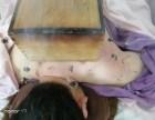 贵州哪有针灸速成班快速学习中医针灸推拿技术