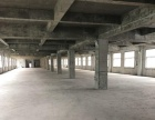 瑞星路153号 厂房 1500平米