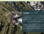 回龙观西三旗专业网站建设网站设计制造公司