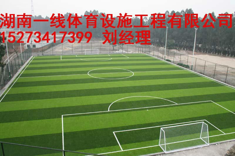 湘潭湘乡市专业人造草足球场建设施工湖南一线体育设施工程