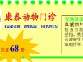 宠物健康免费体检