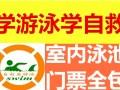 华强北田面花园城市绿洲成人游泳培训班(室内泳池 门票全包)