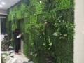北京仿真植物墙价格定做绿植墙墙面绿植装饰
