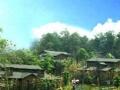 芜湖周边游——度假山庄——青山秀水姚家寨生态园