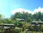 芜湖周边游度假山庄青山秀水姚家寨生态园
