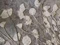 海百合化石长1.8米,高1.2米