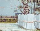 深圳烁鸣婚礼樱花季节必备婚礼,新娘跟妆婚礼主持摄影摄像