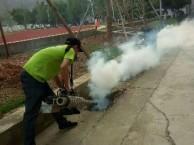 东莞灭虫公司 白蚁防治 杀虫灭鼠技术精湛