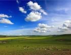 徜徉在中国的美丽草原 呼伦贝尔大草原