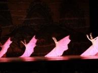 少儿成人零基础民族舞培训,艺考培训,声乐培训