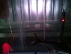 熱帶鸚鵡魚兒