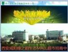西安咸阳市绿之韵生态MALL绿叶产品超市商城招商加盟中