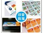 设计/菜谱/画册/清远/精英联创/图文快印