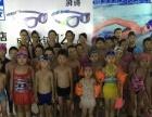 华侨城游泳馆暑假班培训班火爆招生中