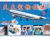 广州天天宠物托运,24小时在线,提供上门接送pk拾彩票网