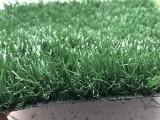 草坪的应用领域