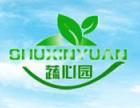 蔬心园芽苗菜加盟