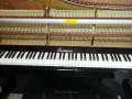 深圳收购钢琴价格,回收旧钢琴 热线24小时恭候您的垂青
