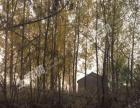 出租 出售文昌湖冲山130亩优质山地