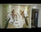 惠州区域专业贴墙纸无缝墙布壁画