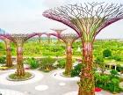 武汉垂直绿化植物有哪些?武汉植物墙