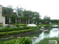 横琴岛对面金地门道A2区29幢一办公室出租