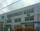 出租新站生态公园共3层 可做厂房仓库办公教育等