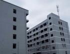 业主直出租桂平工业厂房宿舍办公楼可厨房停车场