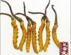 天津冬虫夏草回收价格一般是多少