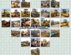 昆明团体二手30装载机,压路机,推土机,发掘机,叉车急转让