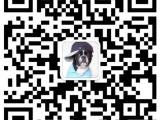 襄樊雪纳瑞 最长情的相伴 您的爱犬 给它一个温暖的家