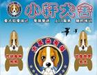 磁县训犬机构开业六周年超值优惠训犬超值酬宾