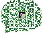 青岛 哪里有金吉拉猫卖 猫舍直销 健康活泼 包纯种 保养活
