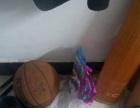 篮球 只打过一次 80 急售 有意电