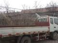 私人六轮货车出售