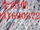 菏泽电缆回收高价回收
