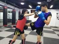 散打 泰拳 女子防身术 少儿散打 少儿武术