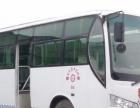 霞丰驾校 十三年品质 专业驾校培训