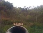 南熏大道 崇州市道明鎮重慶路 廠房 3000平米