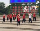 郑州市飞龙武术馆 寒暑假武术/散打培训 少儿武术培训基地