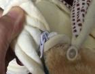 可爱全新小熊睡袋