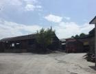 双福镇 厂房 8000平米出租