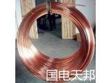 国电天邦铜覆钢绞线