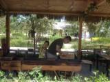 乌鲁木齐宜农菜园 无公害有机蔬菜采摘