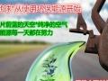 聚阳三味真火环保燃油 投资金额 1-5万元