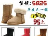 现货雪地靴5825短筒羊皮毛一体雪地靴女