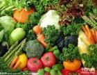 银川以及周边地区蔬菜配送