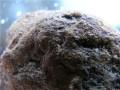 六方晶系陨石的特征及交易价格